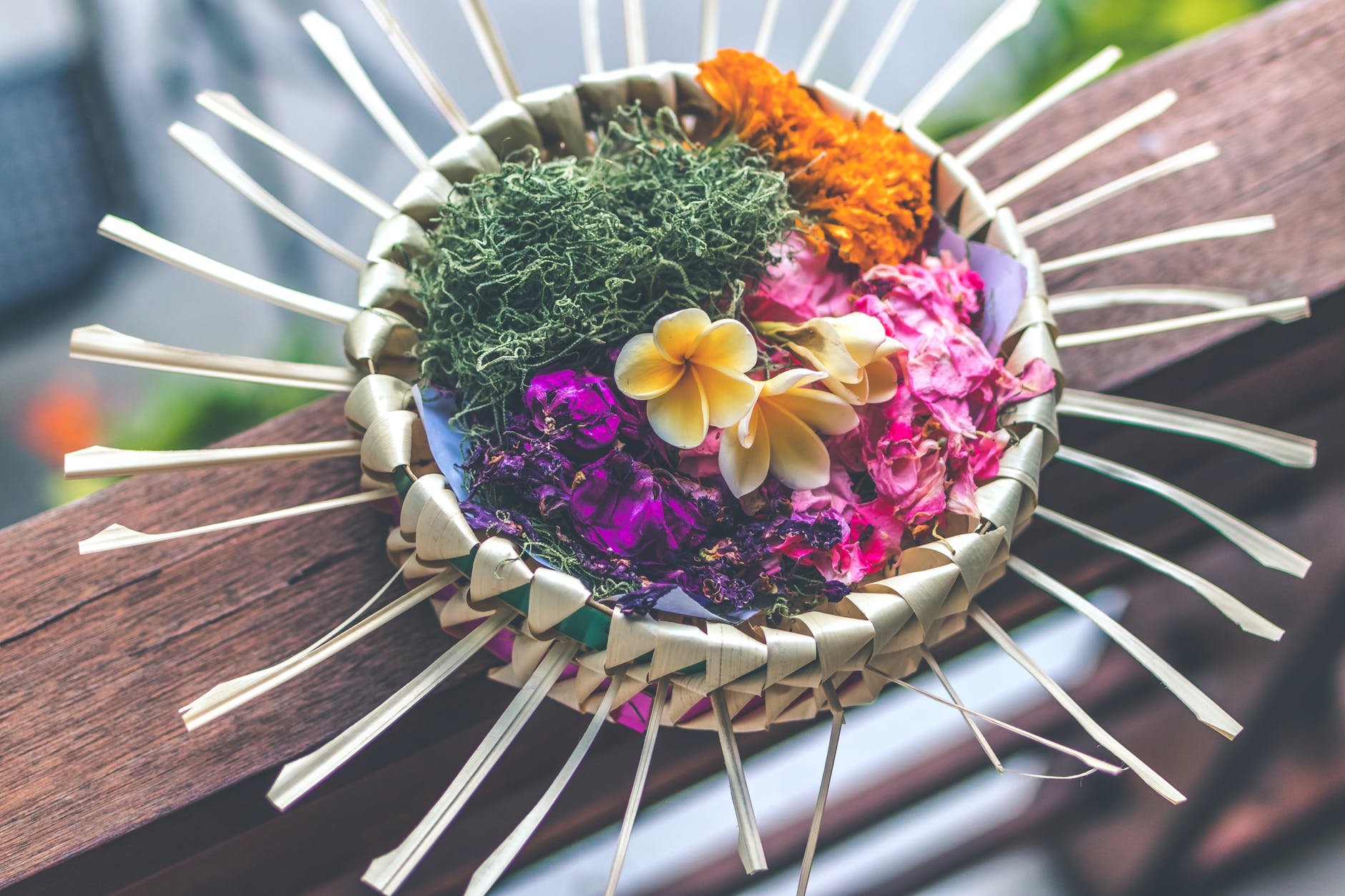 shallow focus photography of multicolored floral decor